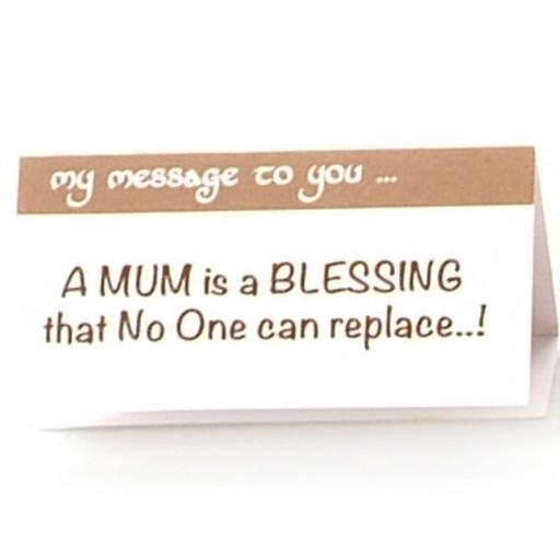 Mum is a Blessing that no one can Replace
