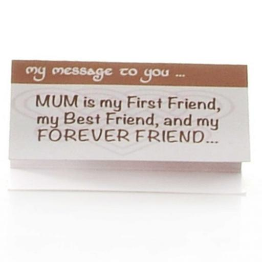 Mum is my First Friend, my Best Friend and my Forever Friend